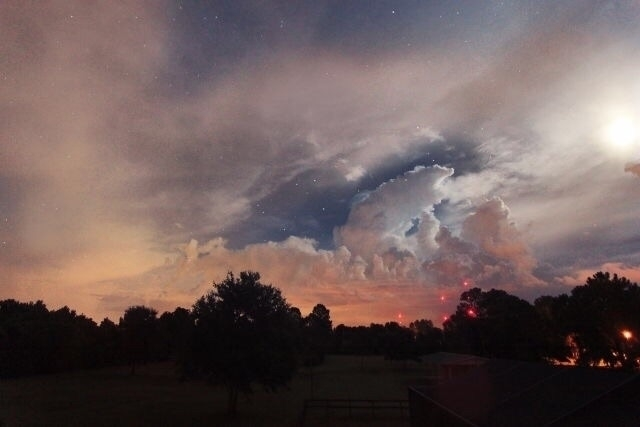 Sky# - blackleg | ello