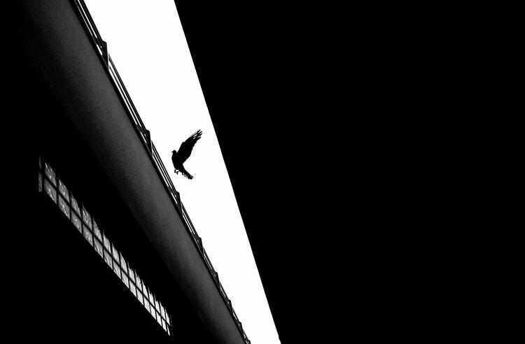 Breakout - photography, bw - elhanans | ello