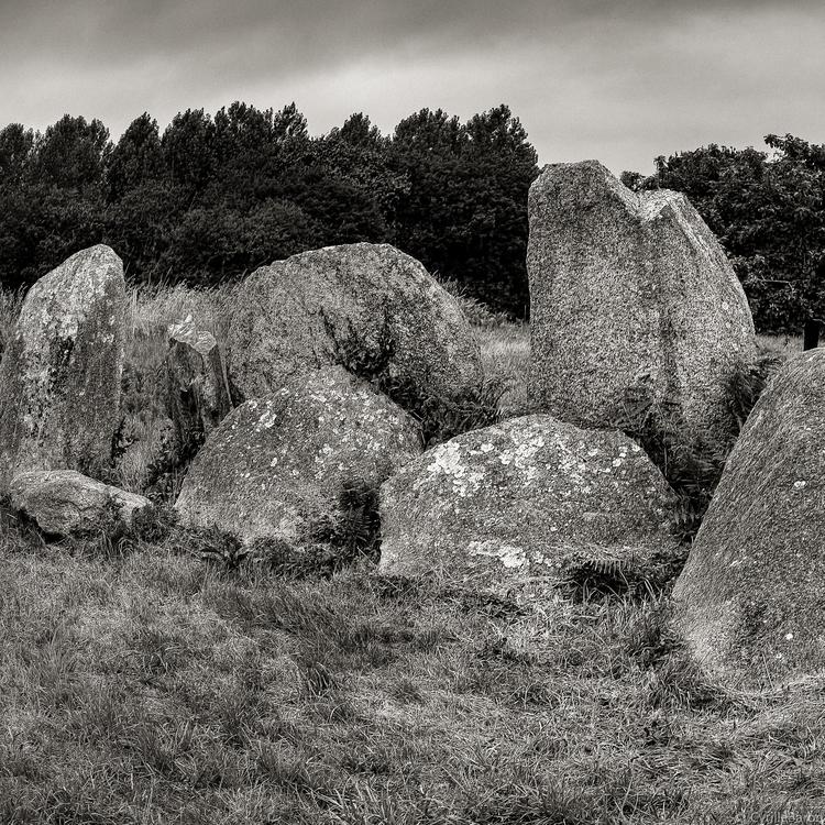 Burial stones Brittany (5000  - Sigma - cyrille_baron | ello