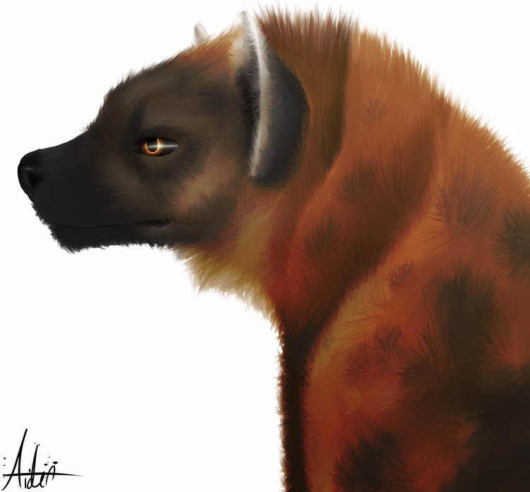 hyena painting (2 - aiden_sonebi | ello