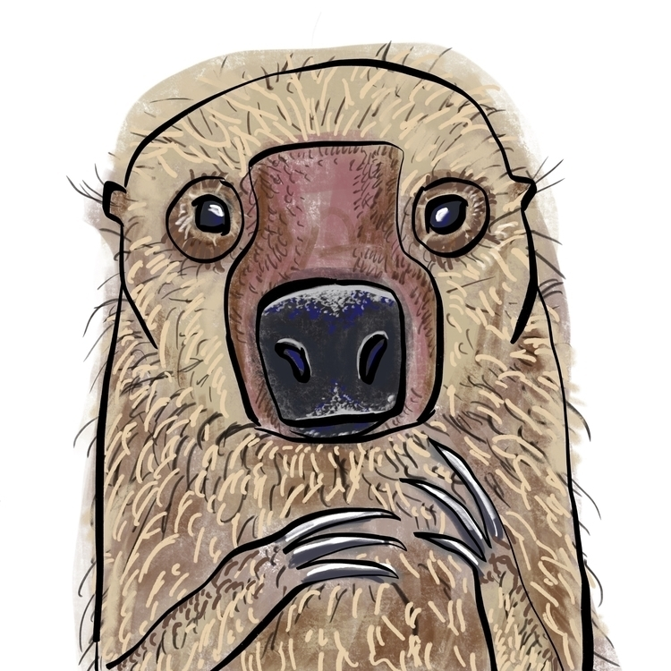 sloth, illustration - reneeleigh | ello
