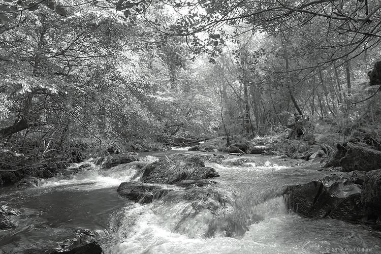Stream Dartmoor (HDR) - 002 com - paulgillard | ello