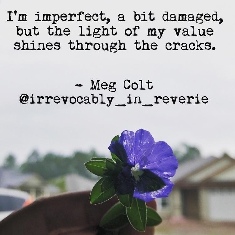 Cracks - poem, megcolt, irrevocablyinreverie - irrevocably_in_reverie | ello