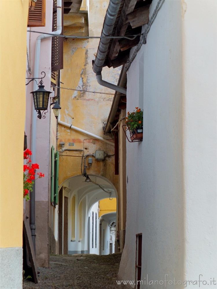 Driagno fraction Campiglia Cerv - milanofotografo | ello