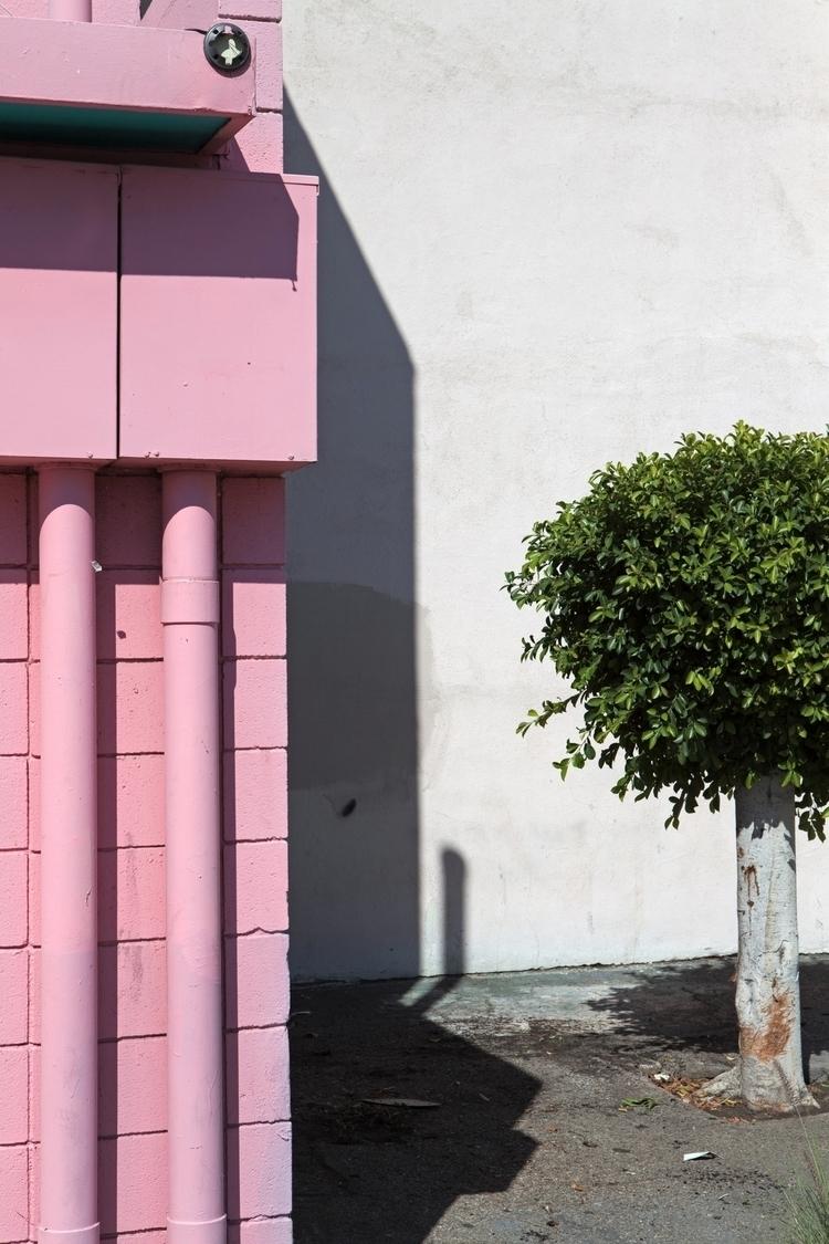 Pink Utility Boxes, Tree, El Mo - odouglas | ello
