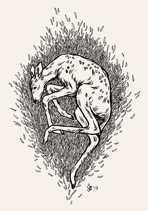 soft animal day 3 inked traditi - dariagolab | ello