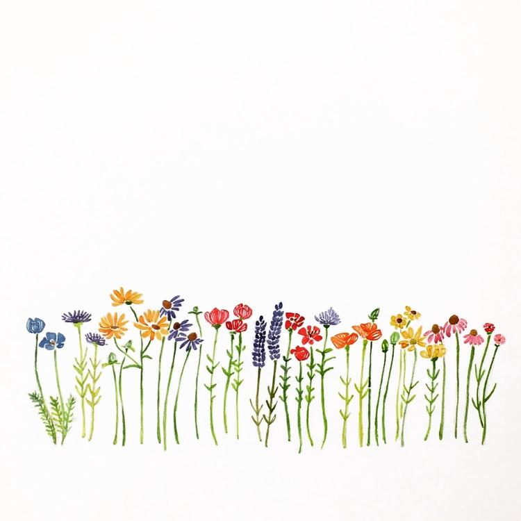 belong wildflowers - painting, illustration - igimidraws | ello