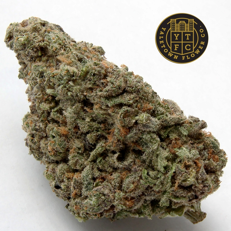 Black Nuken Yaletown Flower Co - greenz | ello