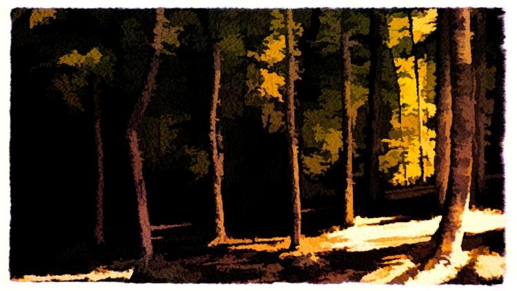 Vestiges Light | [Ello](http - art - photografia | ello