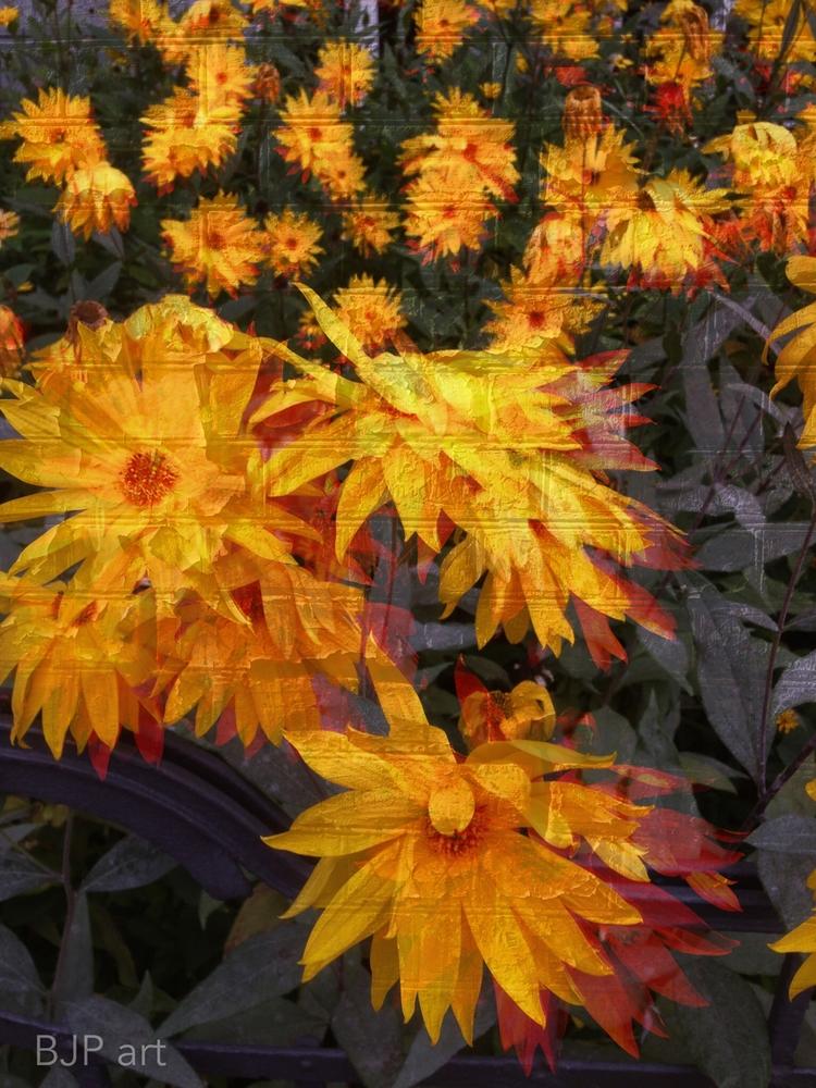 Feuerblumen  - BJP_art, Lichtspurkomposition - bringfried | ello