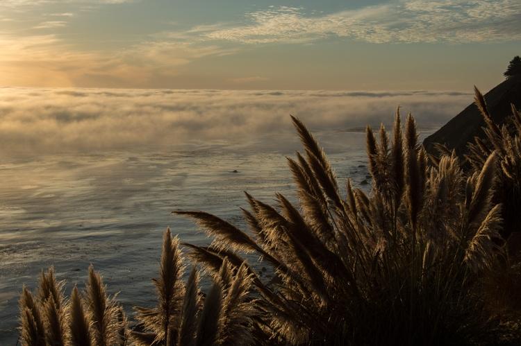 California coast - aramatzne | ello