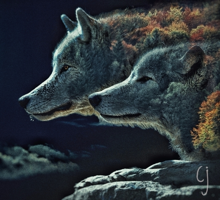 Forest Digital Edit edit - wolves - charliejoeart | ello