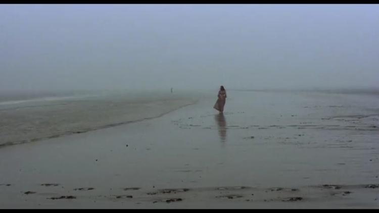 nosferatu vampyre, 1979. desola - anniestephens | ello