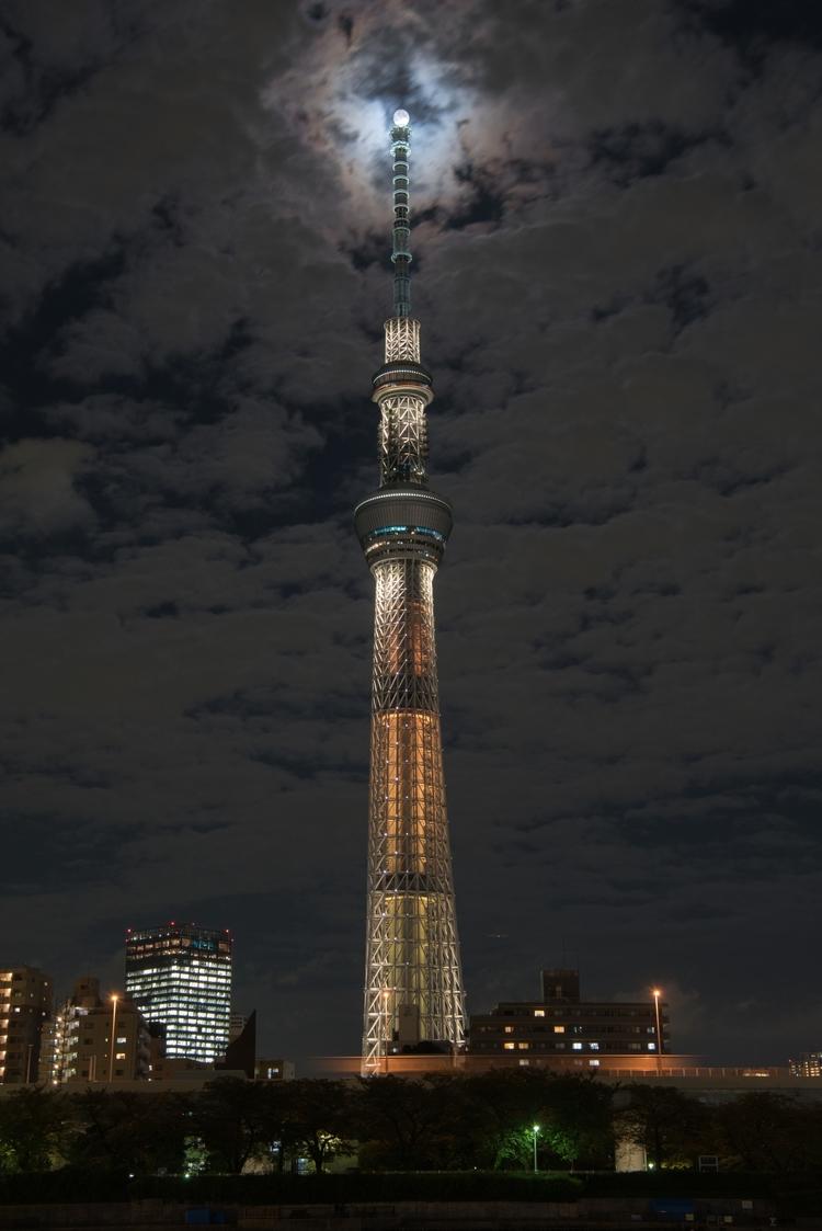 harvest moon top - japan, tokyo - yoshirou   ello