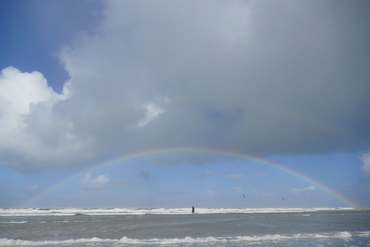 Double Rainbow - sabine   ello
