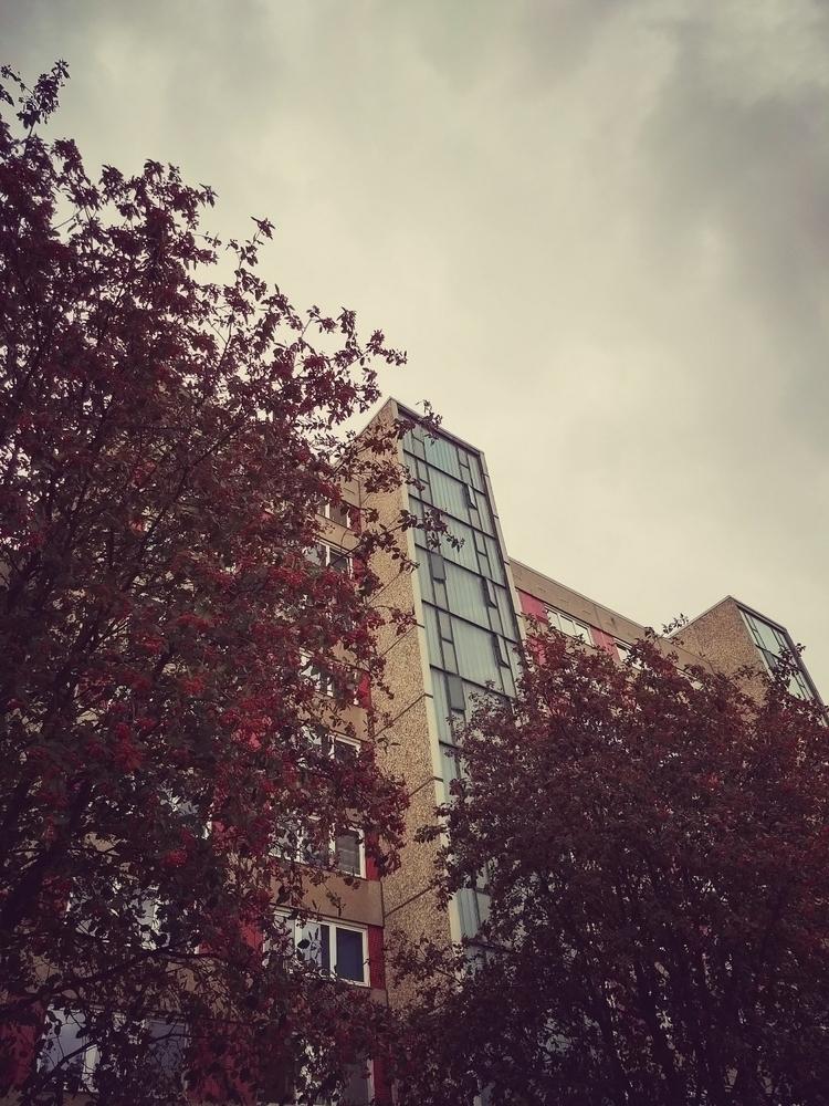 platte - nature, architecture, trees - claudio_g_c | ello