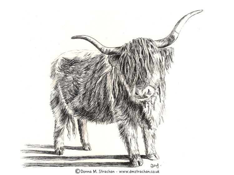 resist drawing hairy wee beasti - donnamstrachan | ello