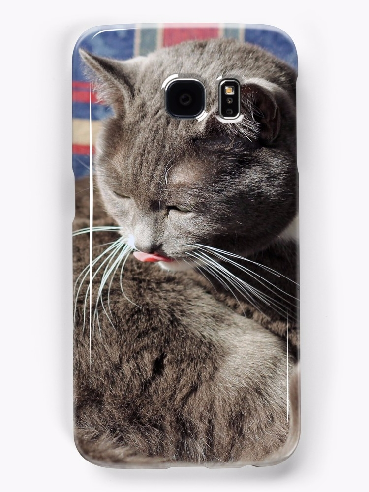 Pickles cat tongue blep! adorab - hudgins | ello