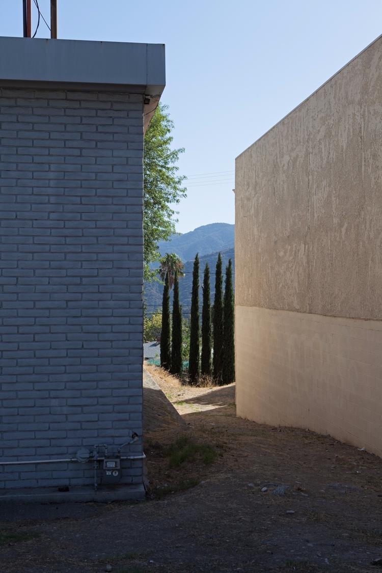 Italian Cypresses, La Crescenta - odouglas | ello