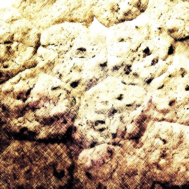 Chocolate Chip Cookies - jmbowers | ello