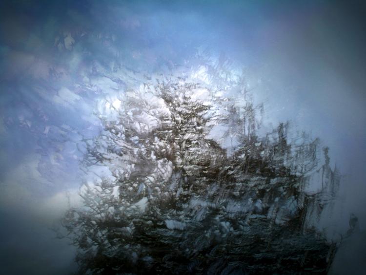 Tree - georgekorunov | ello