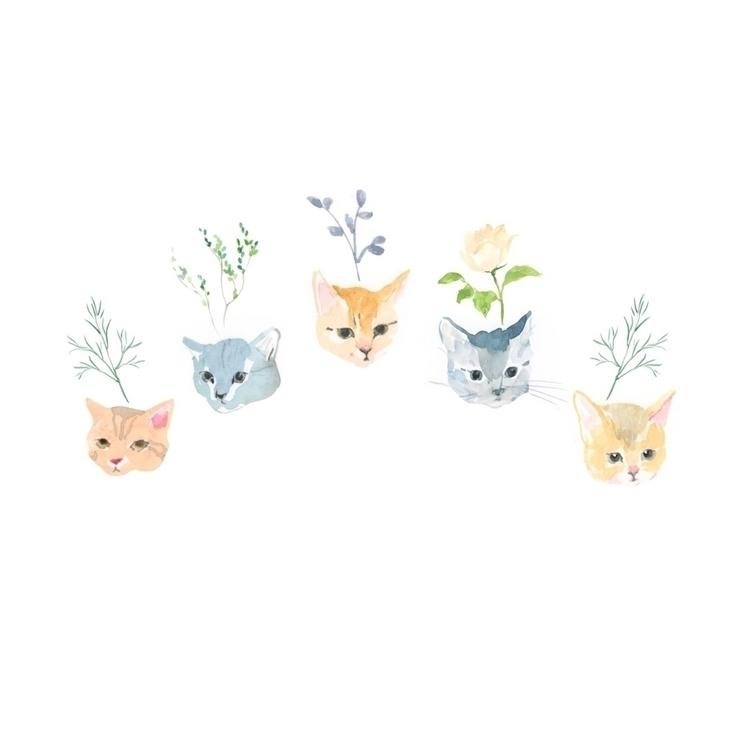 Cats cats cats - jennyronen | ello