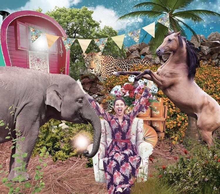 friend circus - > follow col - bedirs | ello
