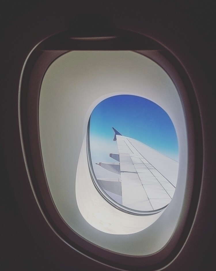 travel mood :airplane:️  - wingwednesday - thereshegoesnow | ello