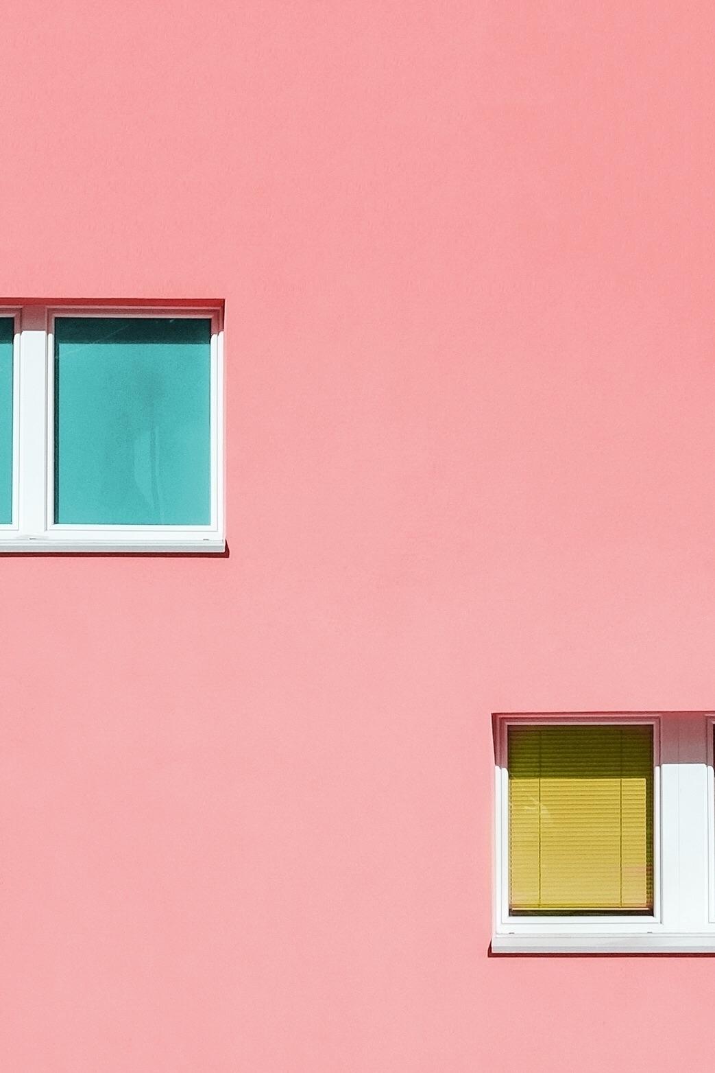 SWITZ - colorful, pink, fuji, yellow - codyguilfoyle | ello