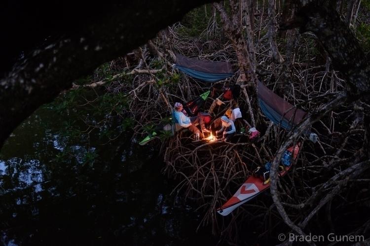 Camping mangroves kinda spider  - bradengunem | ello