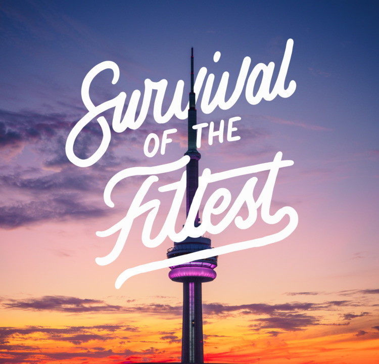 SURVIVAL FITTEST - type, typography - mark1 | ello