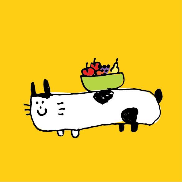 hey! table cat. happy october!  - anzooo | ello