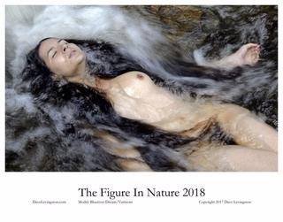 published calendar nude nature  - davel51 | ello