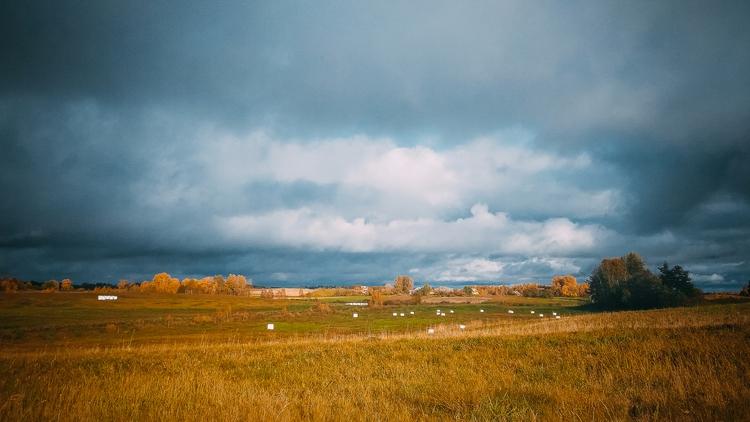 field, horizon, nature, sky, lithuania - beheroght | ello