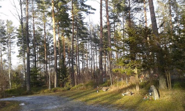 Stenbelagd gång på Skogskyrkogå - skogskyrkogardar | ello