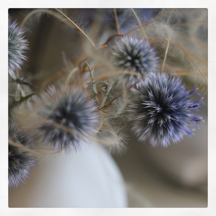 { softness } Wishing soft weeke - cozymemories | ello