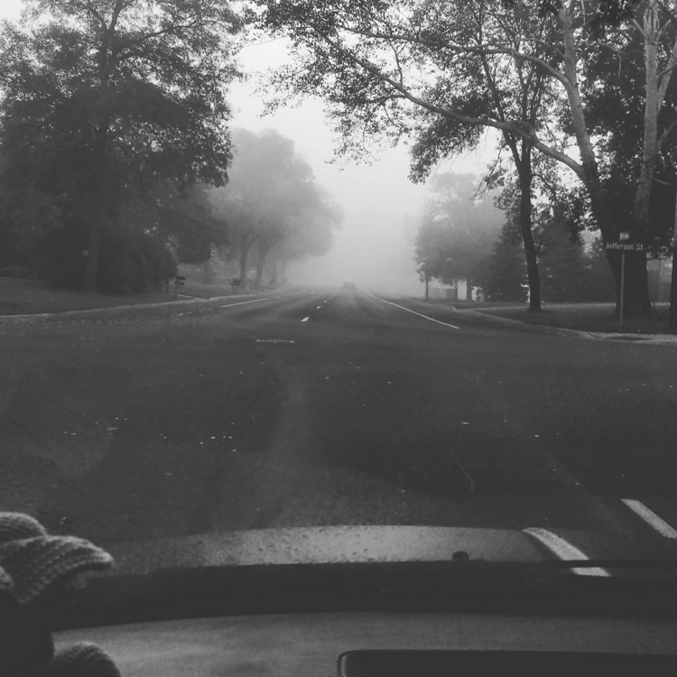 beautiful, foggy morning drive  - thisuniquehome | ello