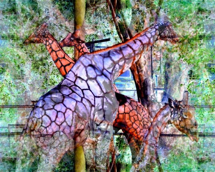 Scenes Phantasm Zoo Images Audu - greycrossstudios   ello