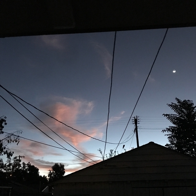 woke pink clouds. favorite kind - usual_anomaly | ello