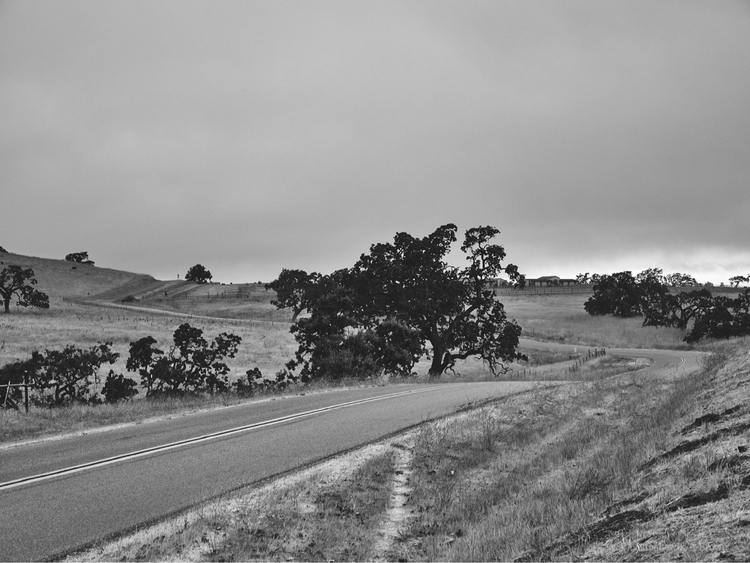 Armour Ranch Road Curve. WebSit - tychobrown | ello
