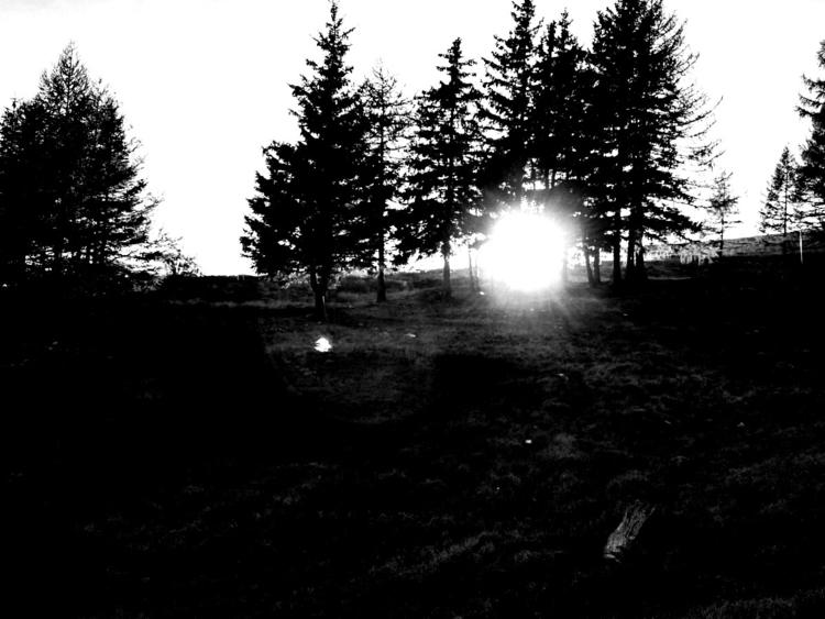 NightmareInTheDaylight - photography - alaska00 | ello