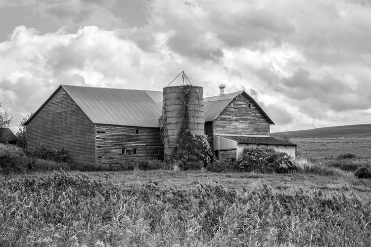 photographed barn rural landsca - brookeryan | ello