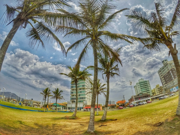 Instagram: psicorafa - beach, Brazil - imprevisivel | ello