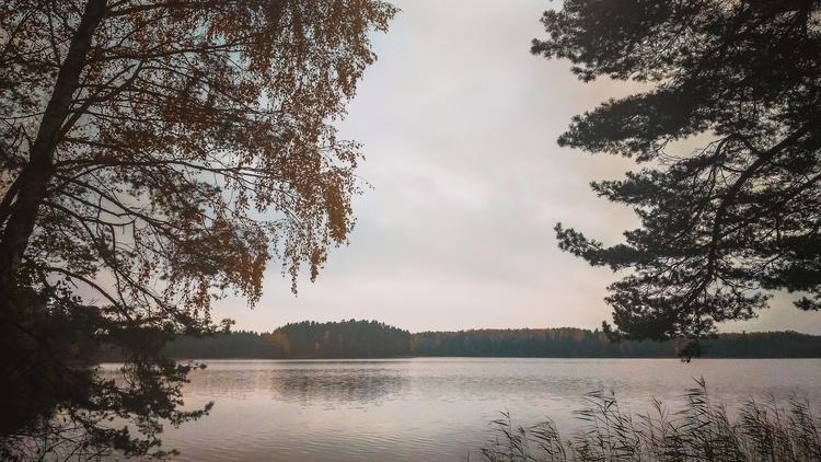 visaginas, lake, nature, lithuania - beheroght | ello