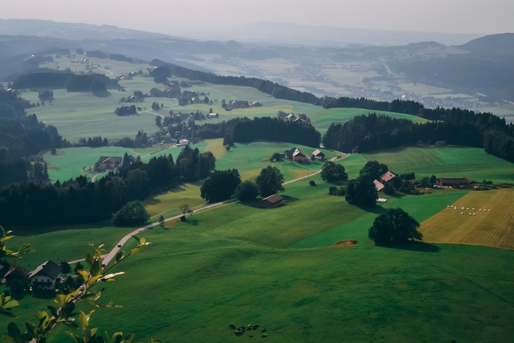 austria, landscape, fields, trees - captain_lukhasan | ello