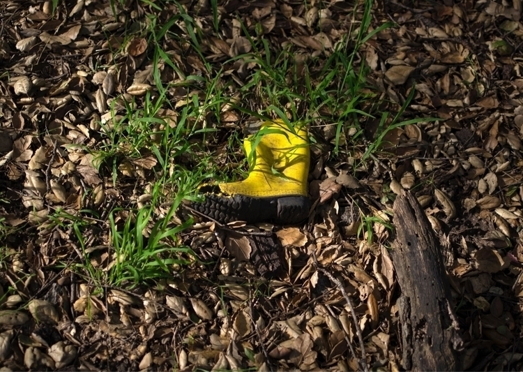 yellow, boot, hike, nature, fossilRidgePark - talyo | ello