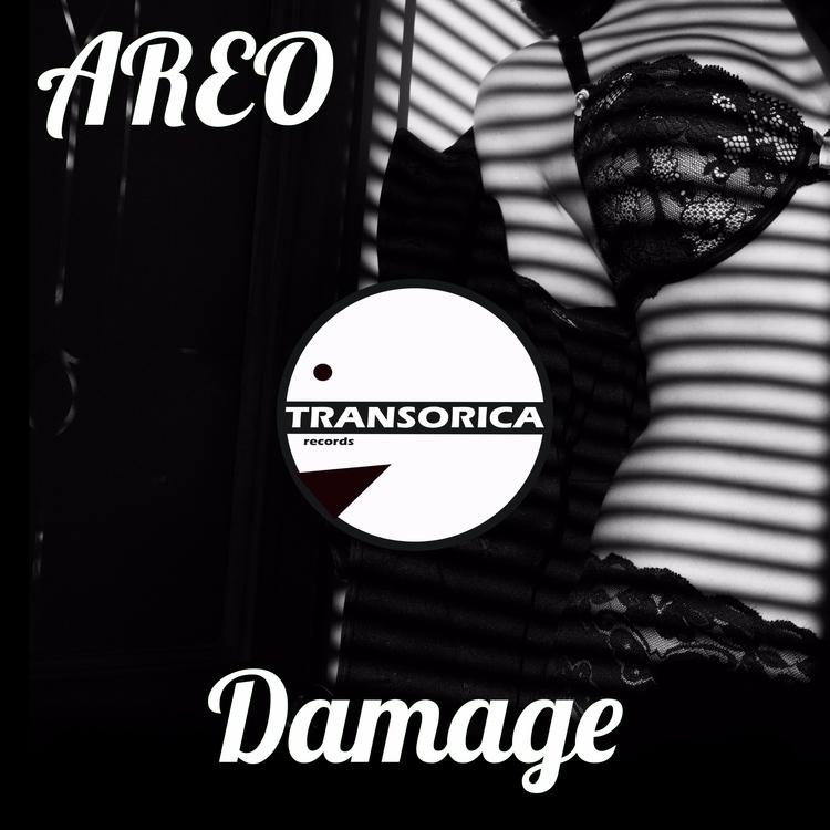 Transorica Records presents ARE - transorica   ello