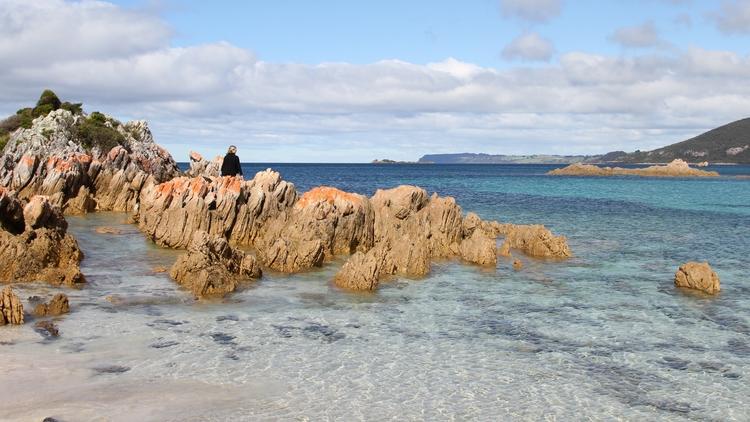 Northwest - Tasmania - b_goat | ello
