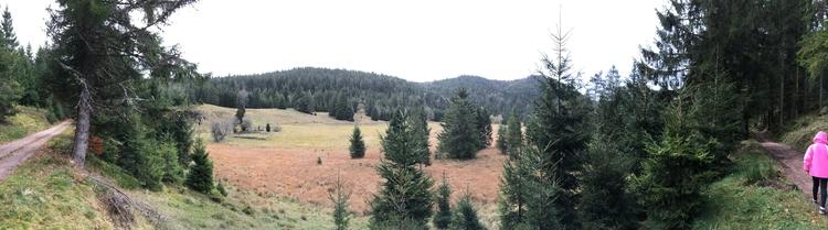Nature reserve Vosges. Spot dee - guyqglover | ello