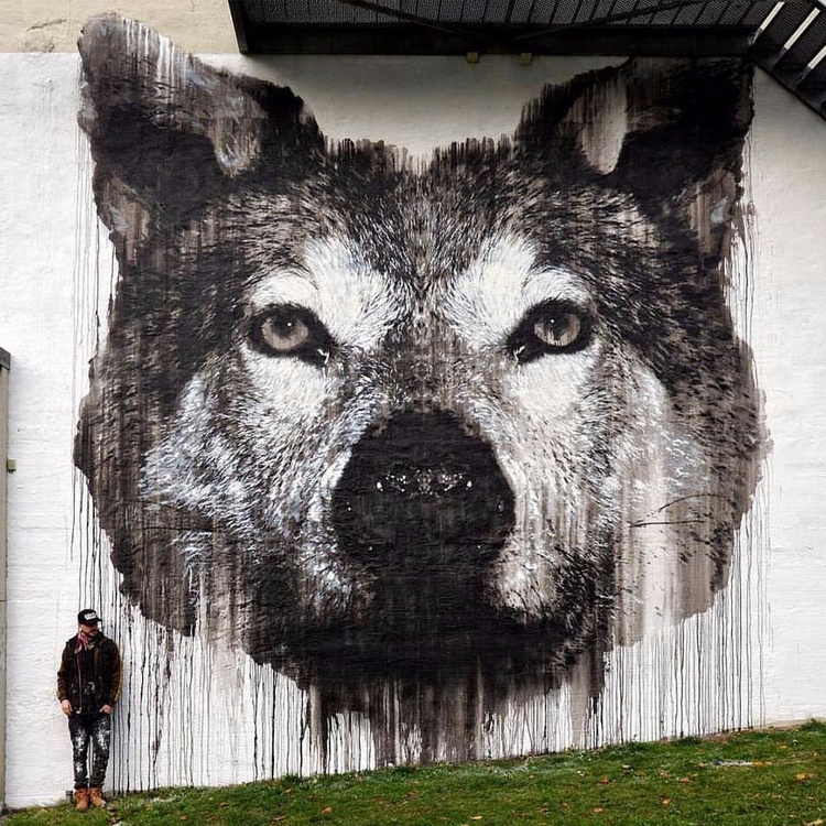 Jussi Twoseven Grey Wolf Nuart  - martynreed | ello